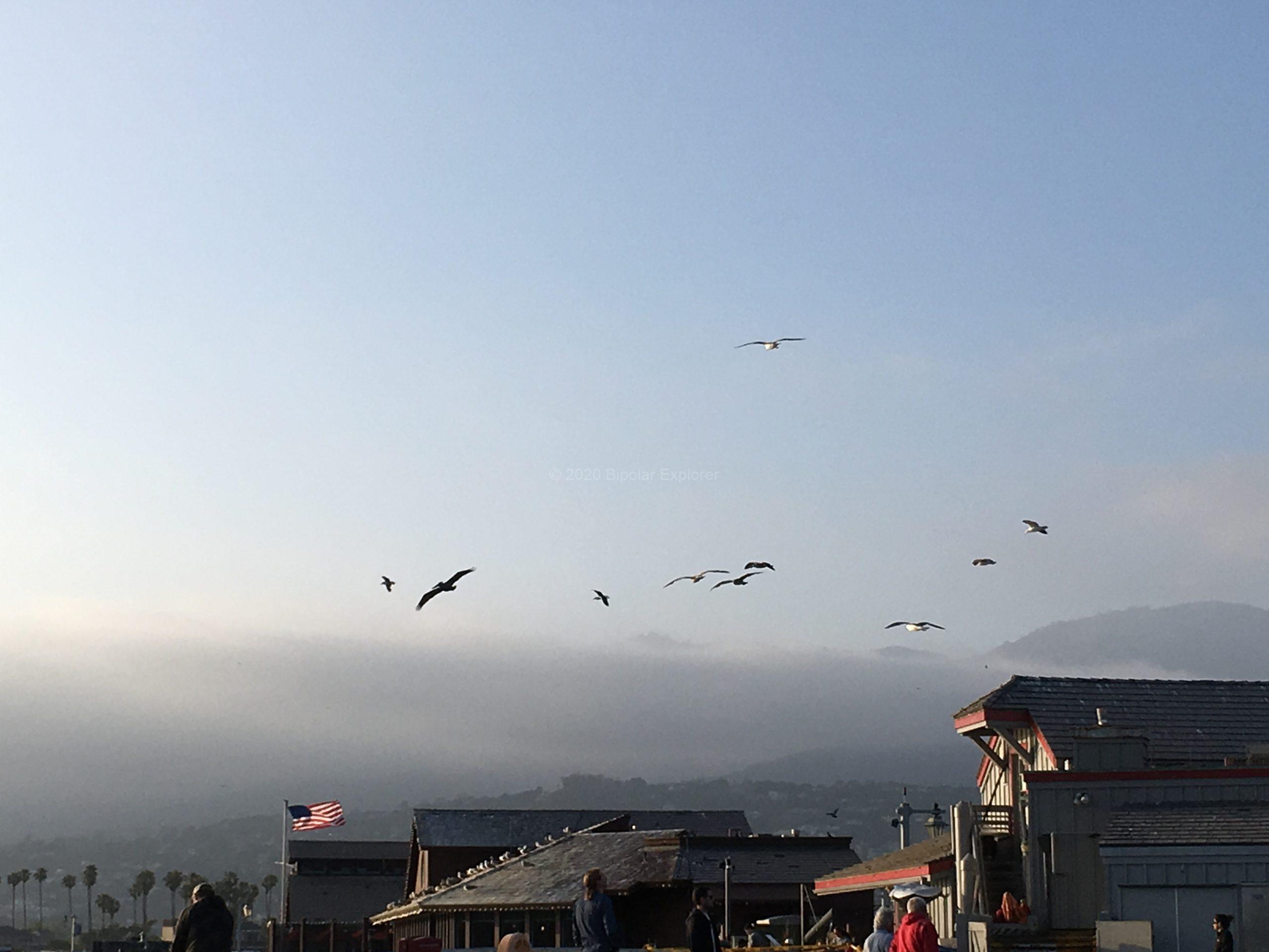 Day 3 Santa Barbara 01